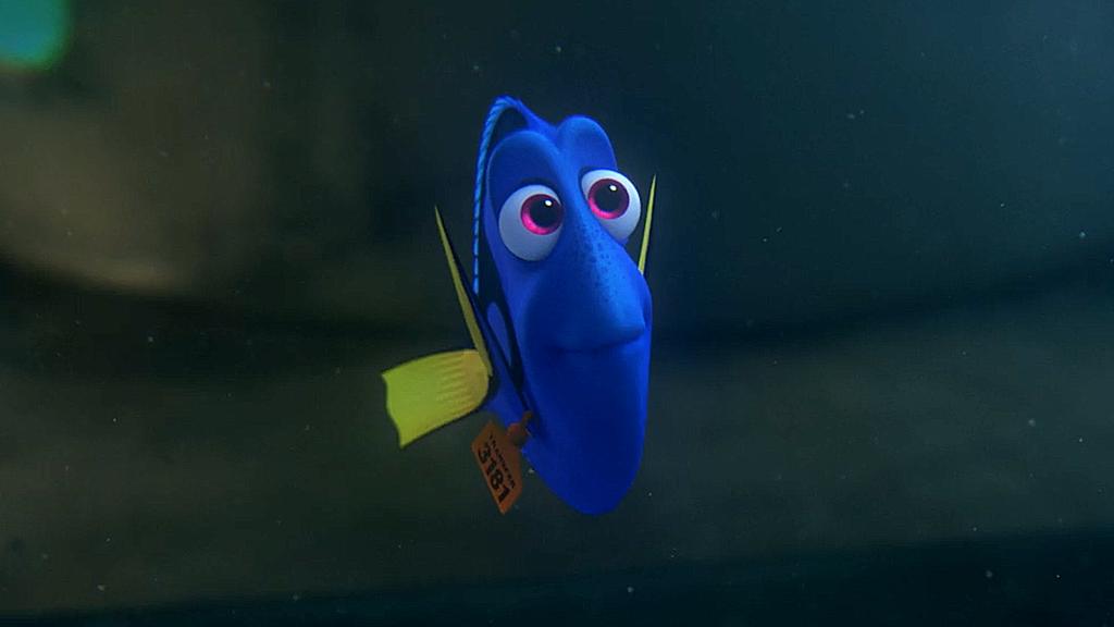 Finding Nemo Disney Walt Disney Movies Fish Animation: Finding Dory (2016)